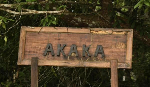 Akaka is in Loango NP